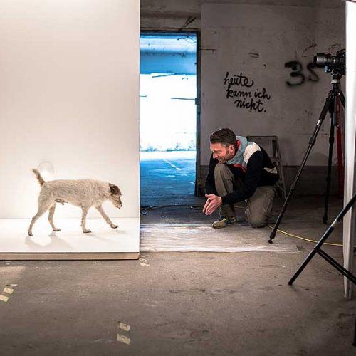 lnm-Shooting_2015-Making-Of-8677